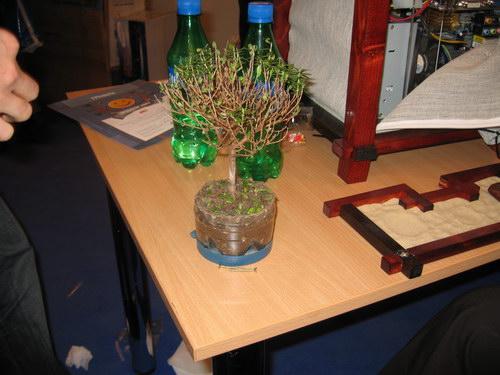 Деревце вне компьютерного корпуса