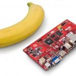 Сравнение размера платы с бананом