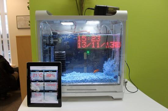 Общий вид проекта Bluereef (The Internet Enabled Fishtank) с его веб-интерфейсом, открытом на планшете iPad